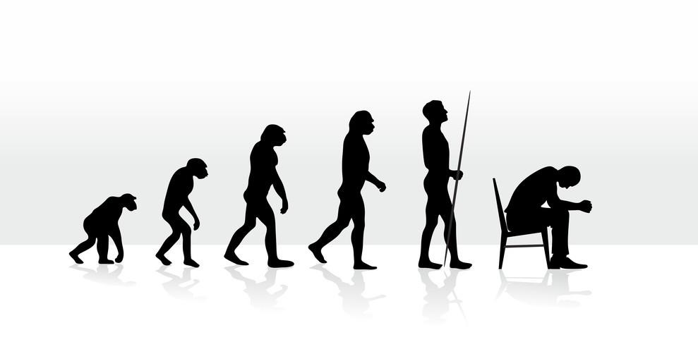coherencia-evolutiva-evolución-homo-sapiens