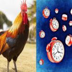 ritmo-biológico-salud-despertar
