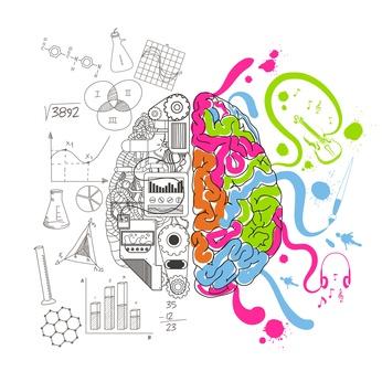 Analytical and creative brain