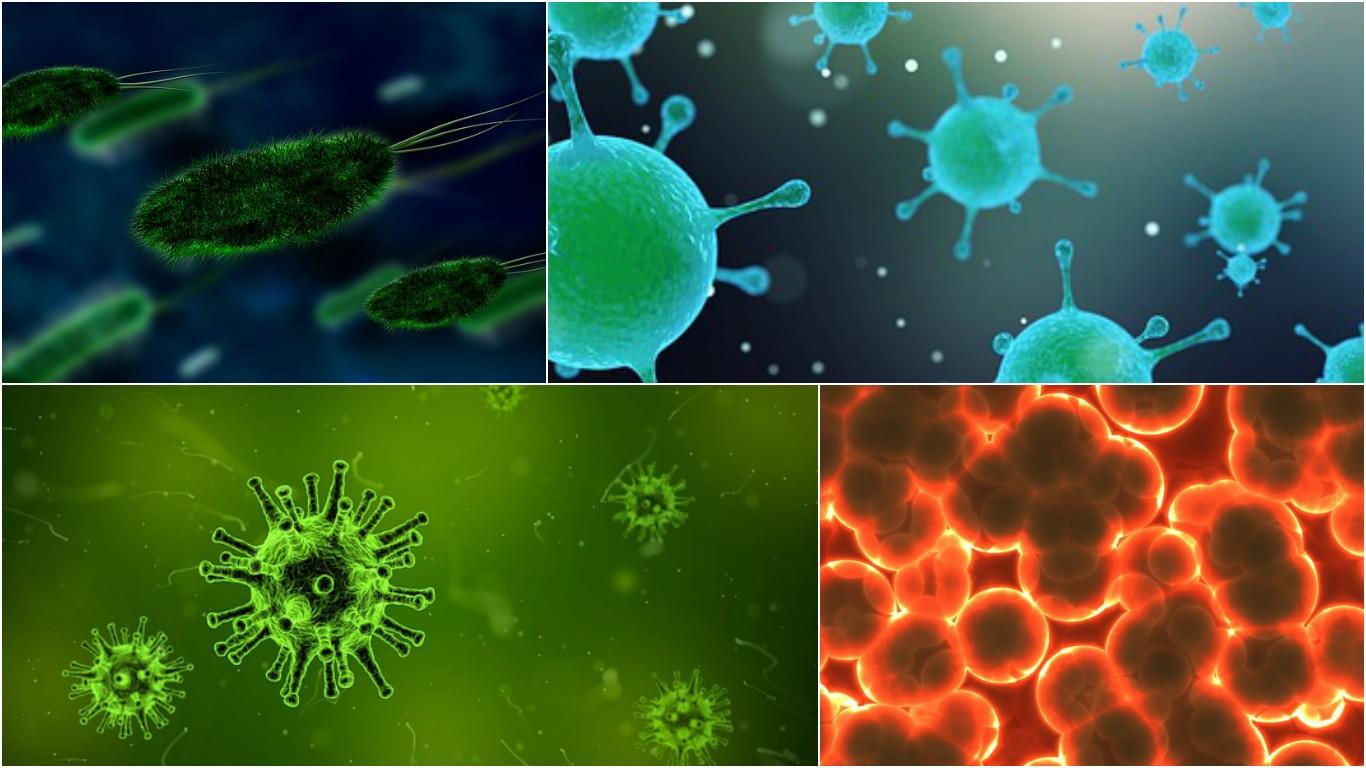 inflamación-salud-sistema-inmune
