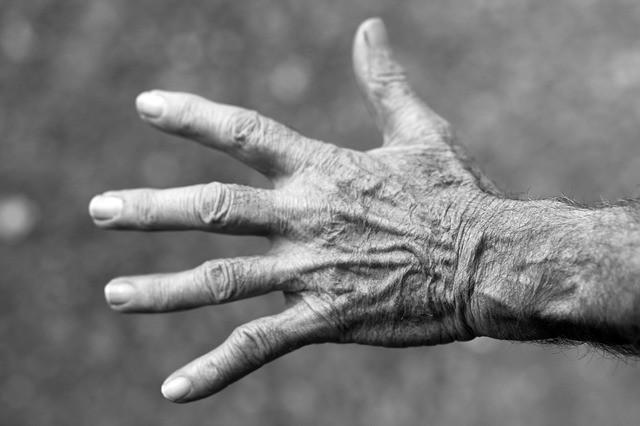 articulaciones-fisioterapia-huesos
