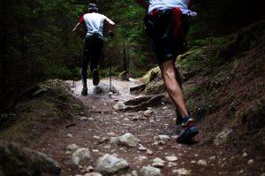 ejercicio-bosque-naturaleza